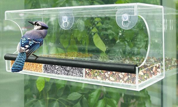 Window Bird Feeder with Strong Suction Cups and Slid Seed Tray