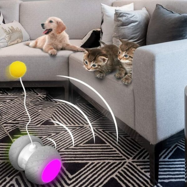 Automatic Interactive Cat Toy That Make Them Entertained
